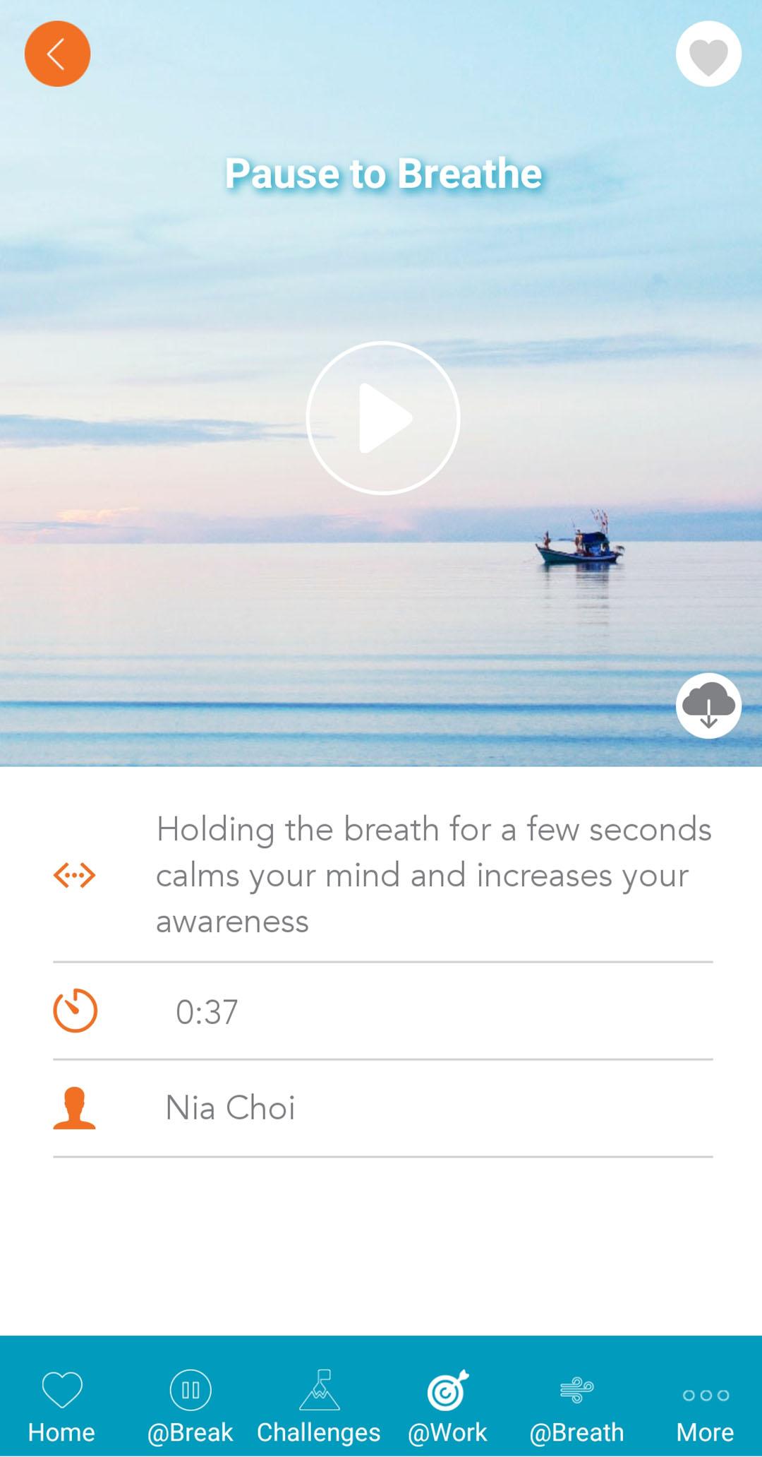 Tlex-flow-app-10