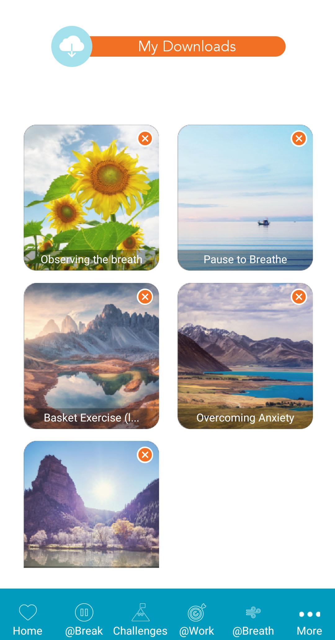 Tlex-flow-app-13